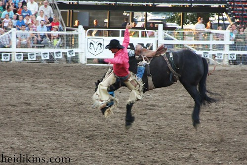 Strawberry Days Rodeo_June 2012 (29)