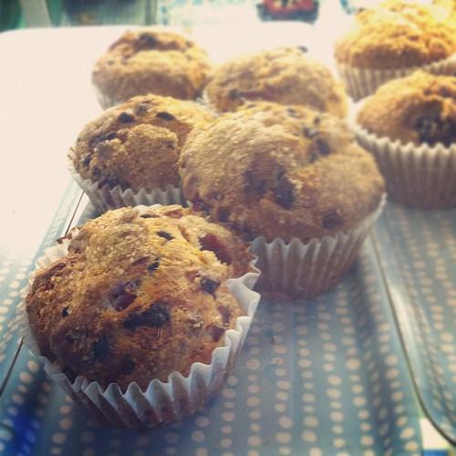 Muffins at Sugar.
