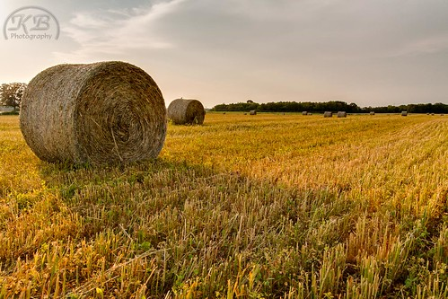 summer field rural landscape evening flickr flat bright country harvest sunny farmland round hay hdr bails facebook grassy cylindrical bailed