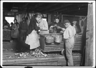 Little Lottie, a regular oyster shucker in Alabama Canning Co. She speaks no English, February 1911