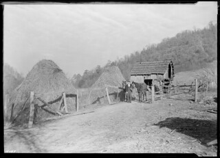 Another view of Gaines McGlothin, R. F. D. #2, Kingsport, Tennessee, on his farm. Note the steep hillside, characteristic of the topography of the region, November 1933