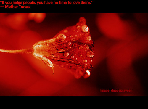 """If you judge people, you have no time to love them.""  ― Mother Teresa by {deepapraveen very busy with work..back soon"