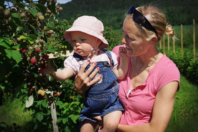 Mamma Sara forklarer til Hermine hvordan man plukker bringebær.
