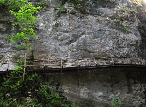 Pokļukas aiza tiltiņš