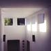 six windows by scott w. h. young