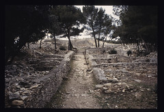 The Oppidum of Nages (IV)