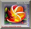 Admin Award pure nature ~ Natur pur... klein 3DKnopf