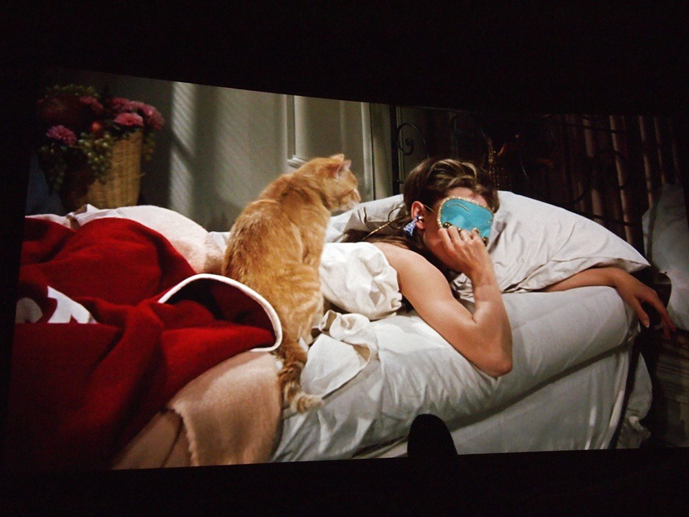 Breakfast at Tiffany's - wake up