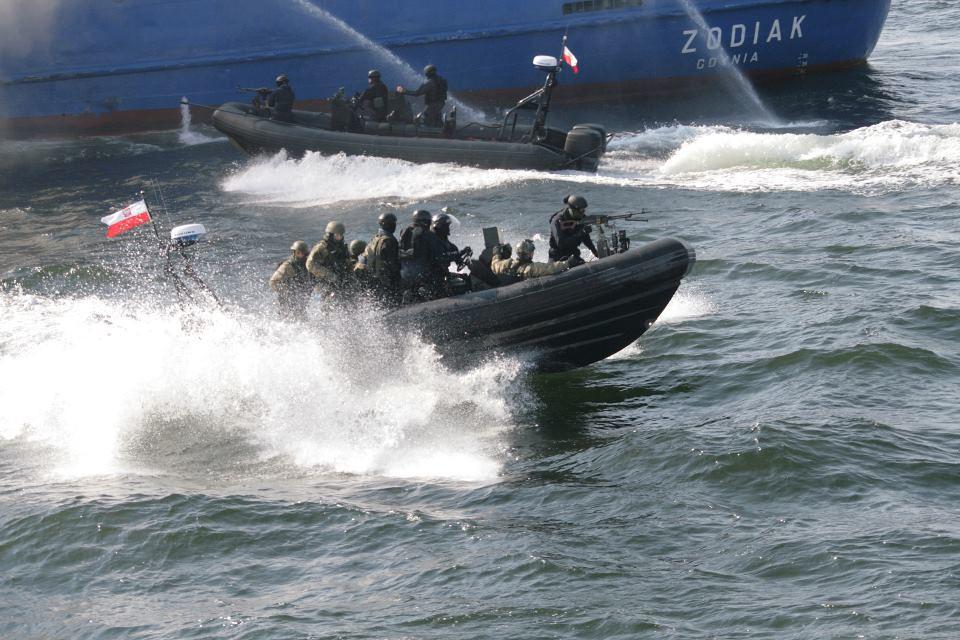 Les Forces Armées Polonaises/Polish Armed Forces - Page 5 6977398030_e7b820899a_b