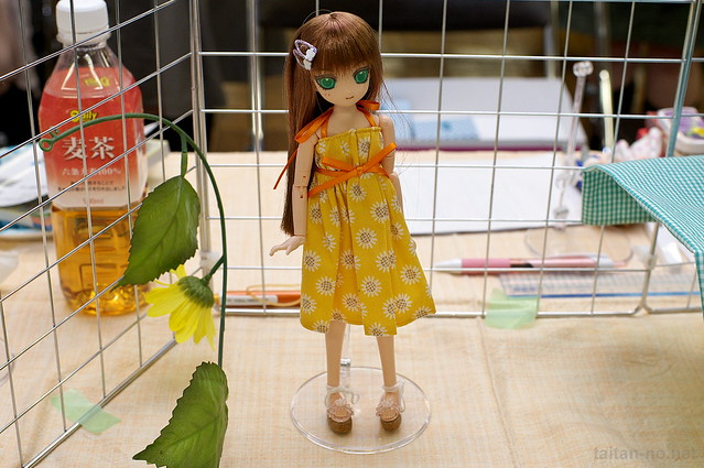 DollShow34-DSC_2661