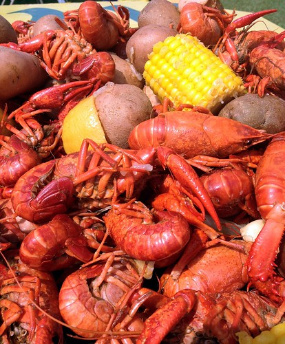Let the crawfish feast begin! by Nieve44/Luz