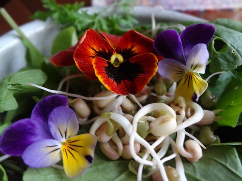 2012.05_salad flowers