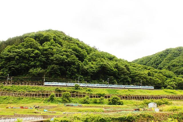 滝子山_45