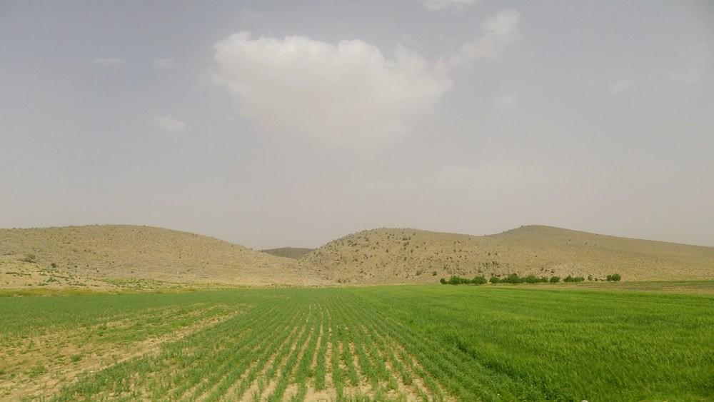 shiraz-tabriz-L1030669