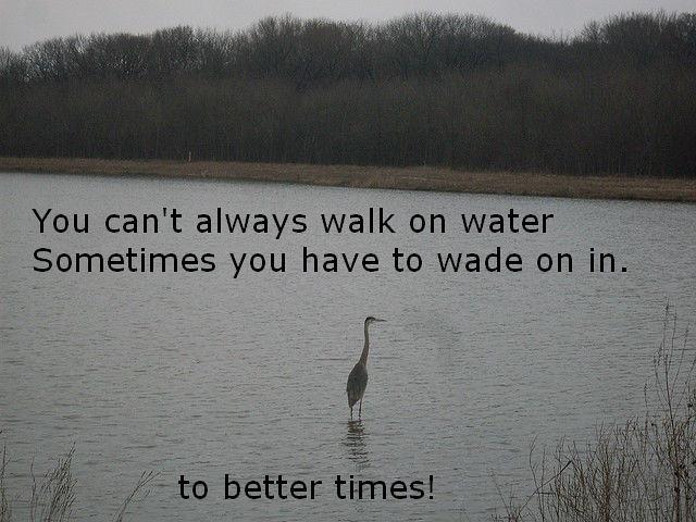 Header of Walk On Water