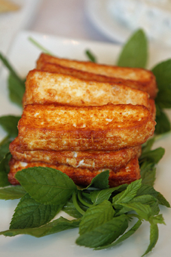 fried haloumi cheese