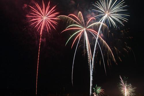 Fireworks flowers_0812
