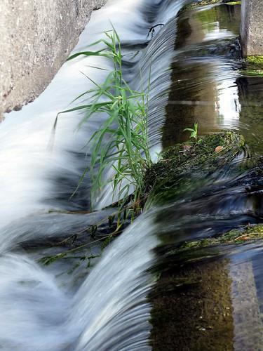 water grass waterfall weir g1x