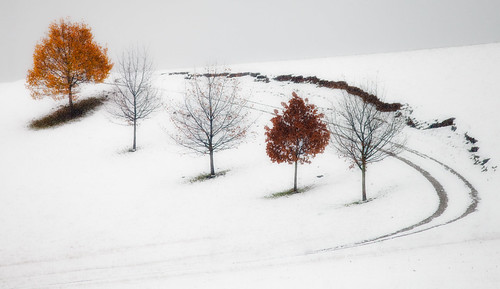 Autumn Snowfall
