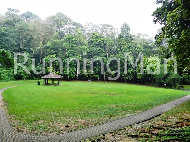 Bukit Batok Nature Park 08