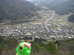 Caterpie in Asago, Hyogo 38 (Takeda Castle Remains)
