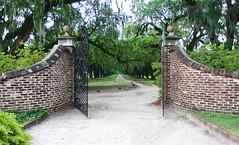 Entrance to Boone Hall Plantation