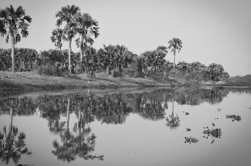 africa southsudan sudan nile whitenile thenile