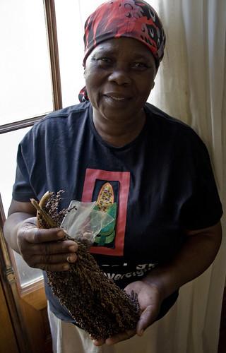 Farmer Selinah Mncwango is proud of her traditional sorghum seeds. Credit: Kristin Palitza/IPS