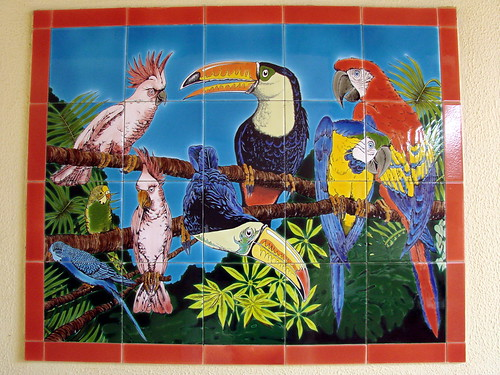 art southamerica birds tile hotel scenery colombia view lowlands culture blackwater whitesand mitu amazonbasin neotropics vaupes mitasava