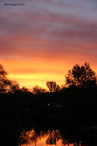 sun dawn nature water reflection trees wisconsin sunrise