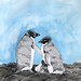 Small photo of Adelie Penguins