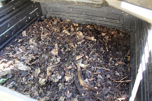 Sifted Unfinsihed Compost