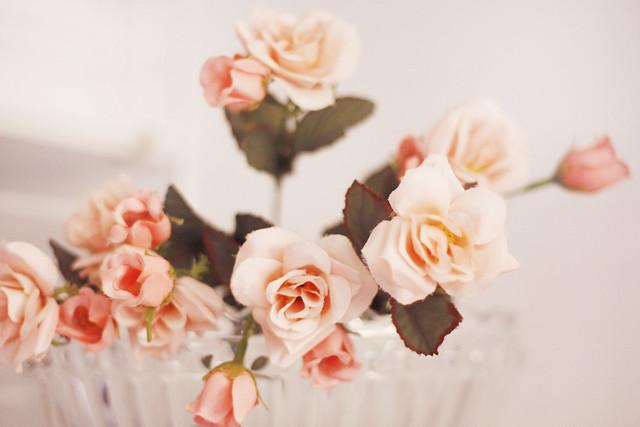 hejregina blomma