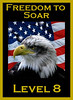 Level 8 Freedom to Soar