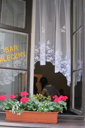 Kukkia ikkunalla by Anna Amnell