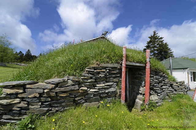 Fitzpatrick's Root Cellar