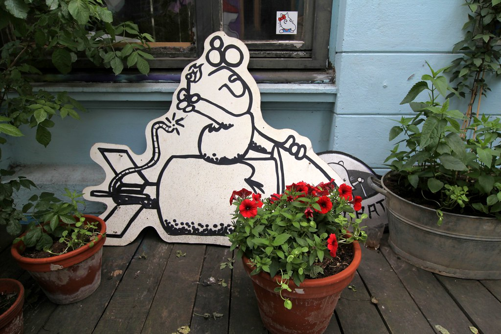 Street Art Hamburg Duckfame