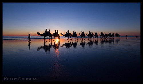 Cable Beach Broome Camels Western Australia