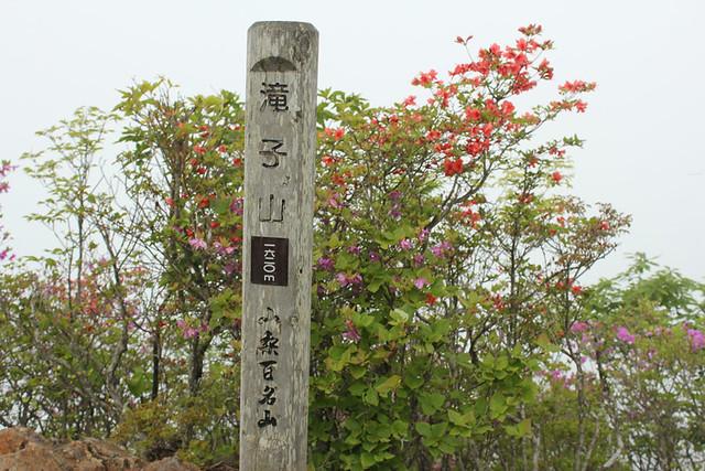 滝子山_33
