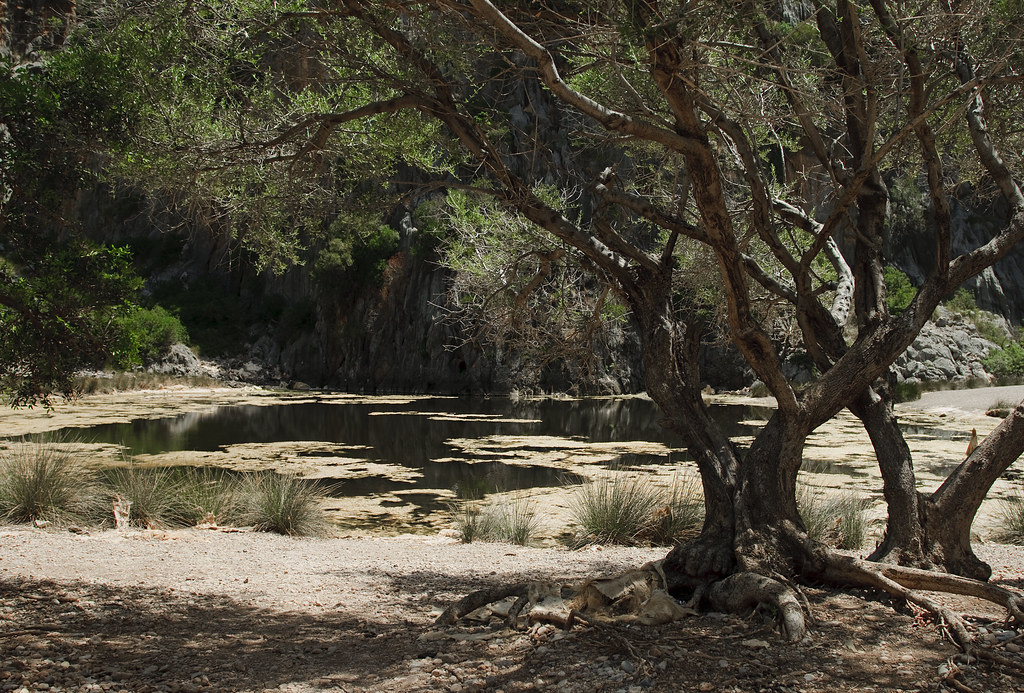 Torrent de Pareis - Mallorca