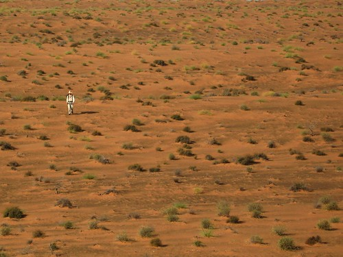 Lone walker in the Wahiba Desert
