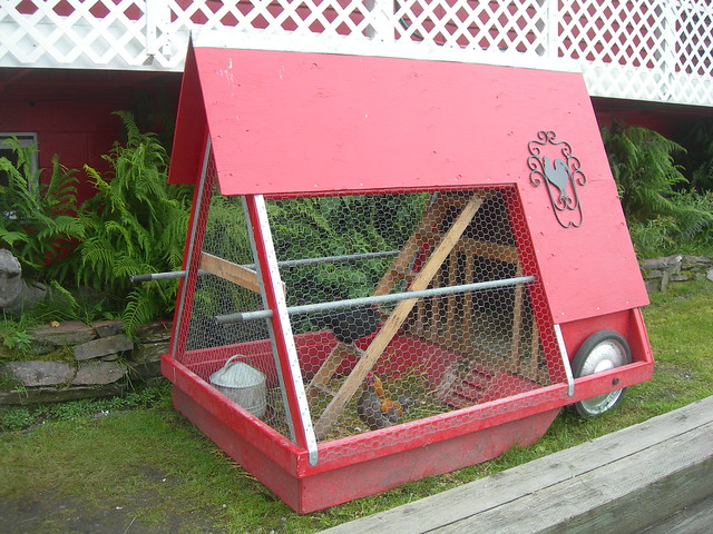 A portable chicken coop flickr photo sharing for Portable coop