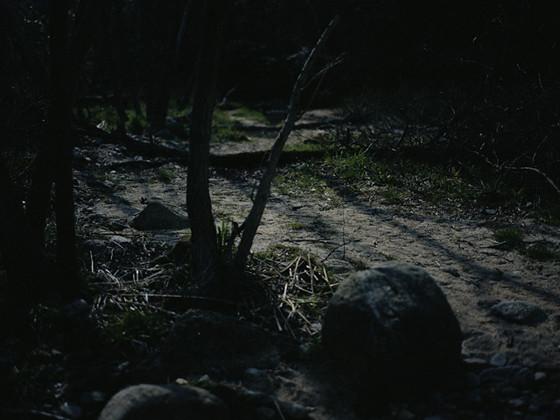 月の光で撮影した、風景写真集制作(写真家 :隼田大輔)_07