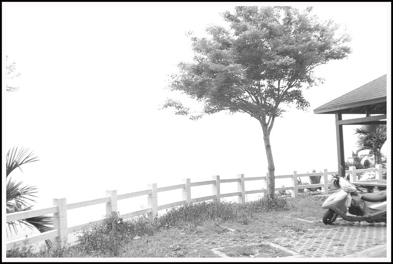 街景的那些人事物 * 黑白風格