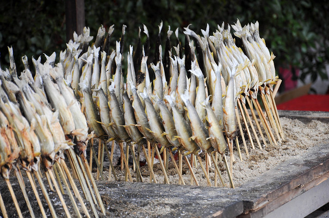Fish on a stick flickr photo sharing for Fish on a stick