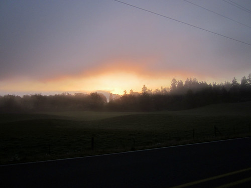 Foggy Champoeg sunrise