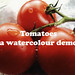 Tomatoes - a watercolour demo
