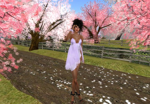 Gift Morea Style Lila (New store) by Cherokeeh Asteria