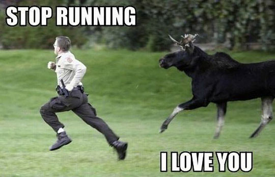 Stop Running, I love you.