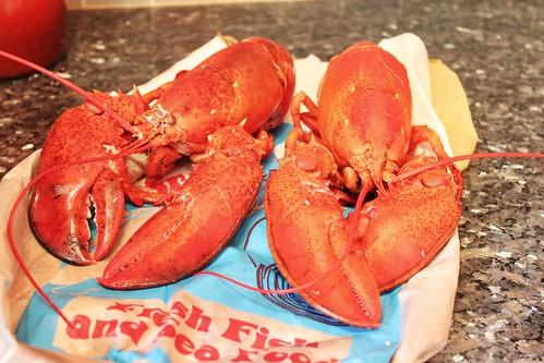Lobstah